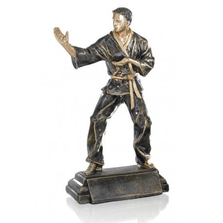 Trophée Résine judo 22 cm