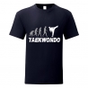 Tshirt TKD Evolution